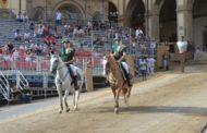 Scelti i cavalli per la Giostra