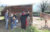Porta Sant'Andrea: domenica scorsa la tradizionale Benedizione delle Scuderie.
