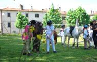 Trofeo del Saracino, metti a cavallo un ragazzo speciale